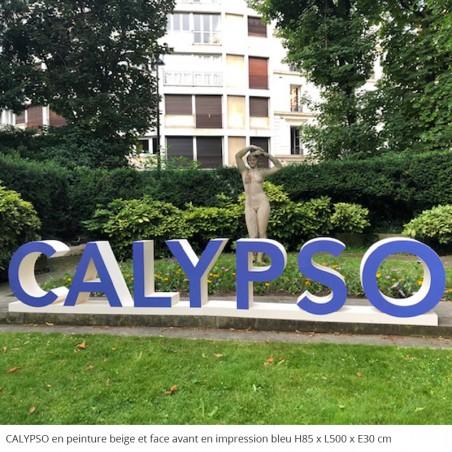 Logo Calypso géant en polystyrène évènements professionnels peinture beige et impression en face avant bleu
