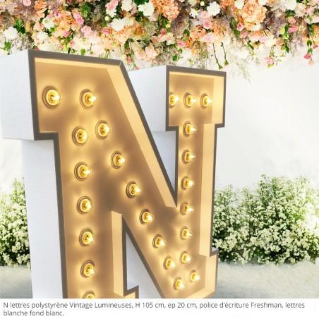 N, lettres polystyrène vintage lumineuses, ampoules leds, polystyrène blanc, fond blanc